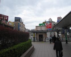 photo222[1]